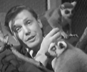 A younger-looking Sir David Attenborough with lemurs from Madagascar. (Screen capture image from www.bbc.co.uk)