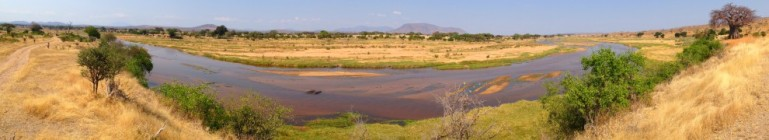 Great Ruaha River, Ruaha National Park, Tanzania.