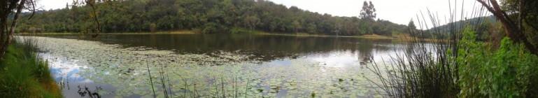 Trout lake near Mufindi, southern Tanzania.