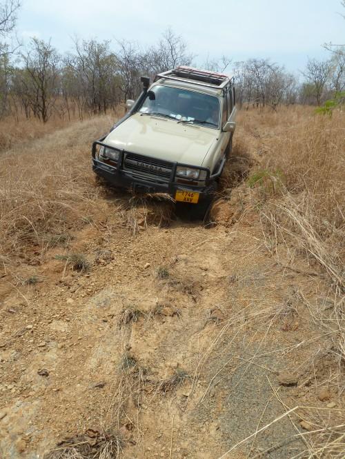 Vuma Hills, Tanzania. October 2014