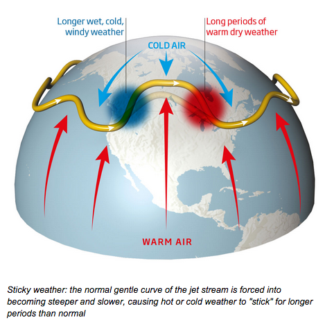 Crazy weather and the jet stream. Image: screen capture from New Scientist.