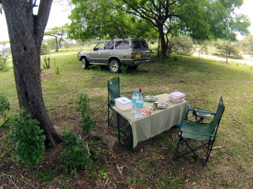Bush picnic, Selous Game Reserve, Tanzania. 2013