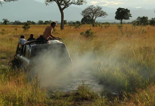 Getting muddy, Mikumi National Park, Tanzania. April 2012